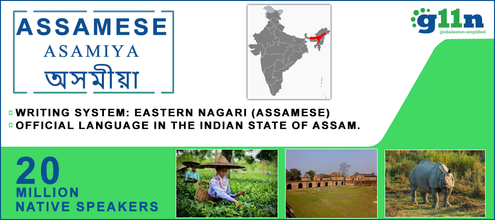 Assamese Translation opportunity map in Assam